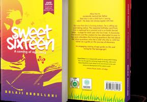 Sweet Sixteen Novel Summary