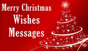 100+ Merry Christmas Texts and Wishes for December 2020