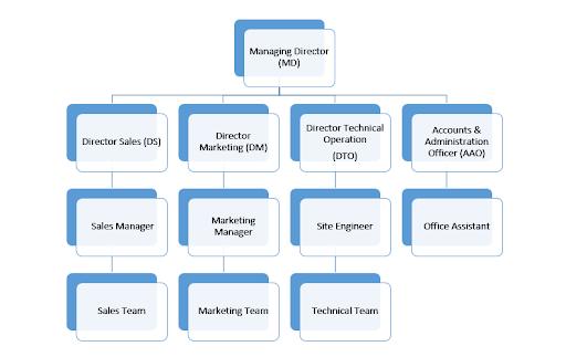 Organogram of a company
