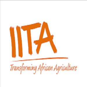 IITA Recruitment 2020/2021